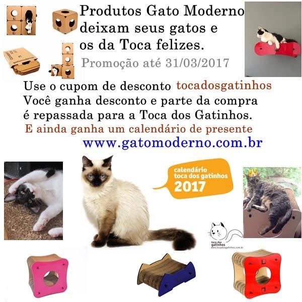 Gato Moderno - Arranhadores, Labirintos e Caminhas de Parede.