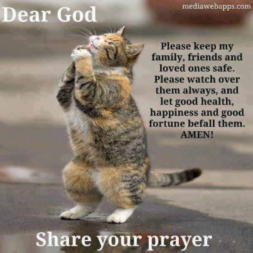 Good Morning Family Prayer : Cottage charm prayers to you