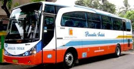 Nomor Telepon Agen Bus Rosalia Indah Sumatera