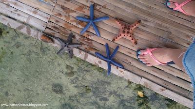 Olango Island in Cebu travel diary marine sanctuary 1
