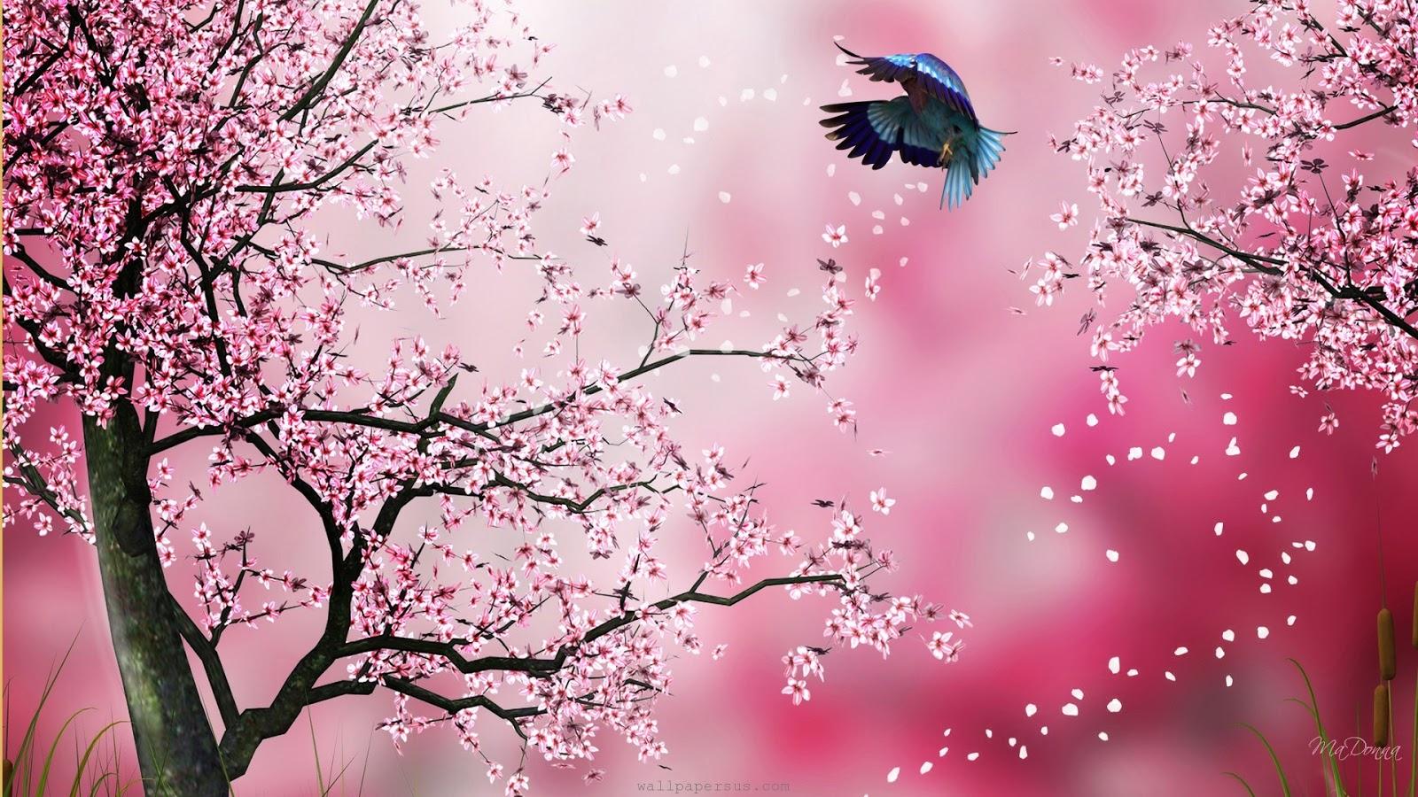 Sakura Pink Abstract Blossoms Cherry Firefox Persona Flowers