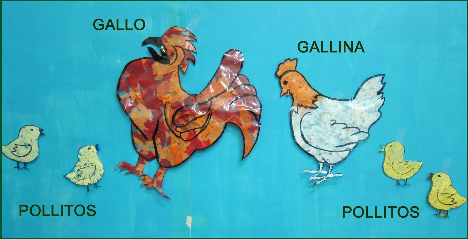 Gallo Gallina $ 150000 En Mercadolibre Picture