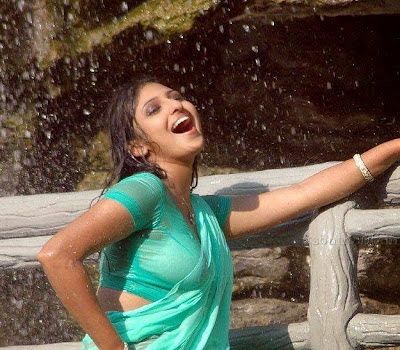 Tamil Actress Monica in wet saree hot pics