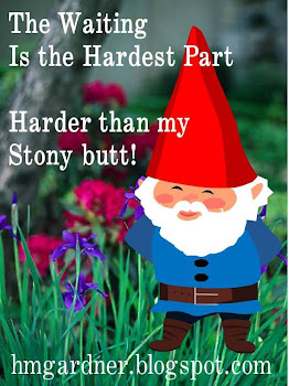 Gnarly Gnome!