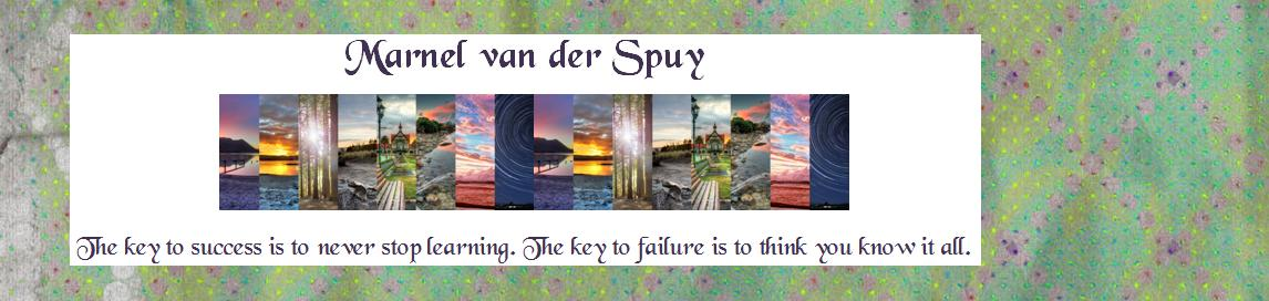 Marnel van der Spuy