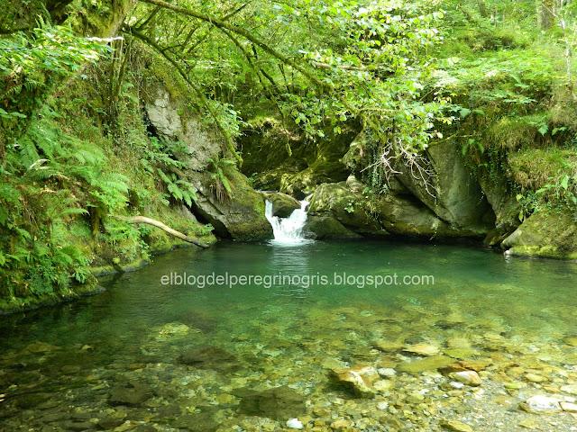 bosque-espinaredo-asturias