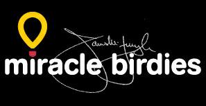 Miracle Birdies
