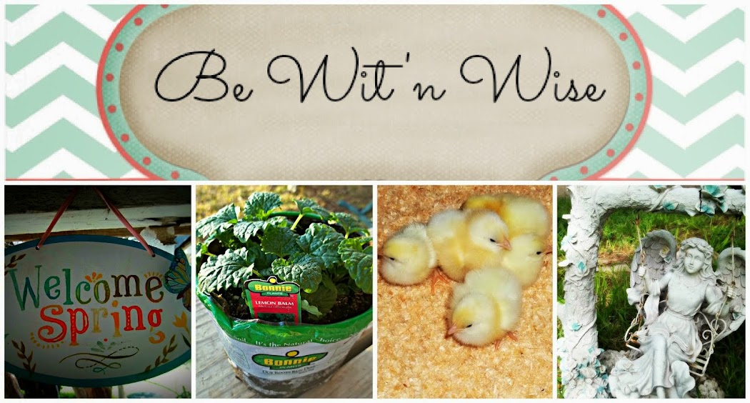 Be Wit&#39;nWise