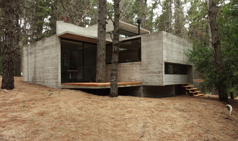 Concrete Glass And Wood House Buenos Aires Argentina