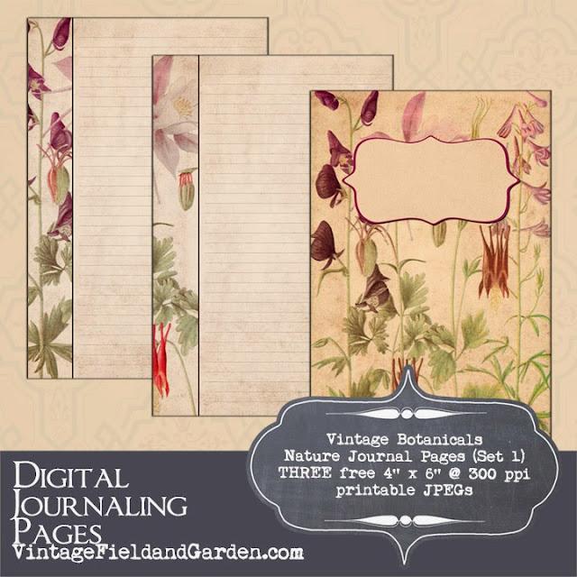 http://2.bp.blogspot.com/-5x7ACYvXqh4/UzIjRsA7EwI/AAAAAAAAIUU/2ZgkNeqYGy4/s640/Vintage+Botanicals+Nature+Journal+Preview.jpg