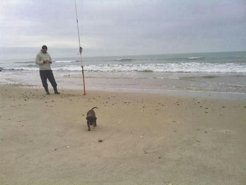 De pesca con mi perro yuki