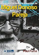 Paúl Puma: ensayo, crítica literaria