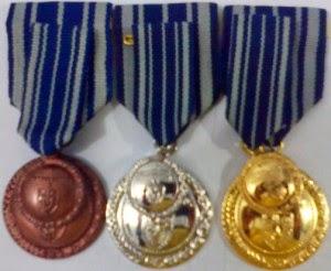 Tanda Kehormatan Satyalancana Karya Satya