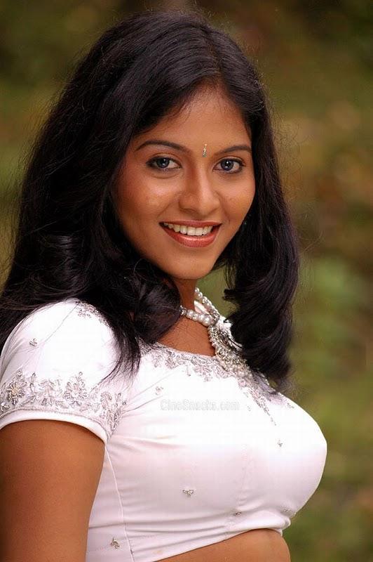 Anjali Actress Hot Pics Hot Actress Pics Blogspot In Saree