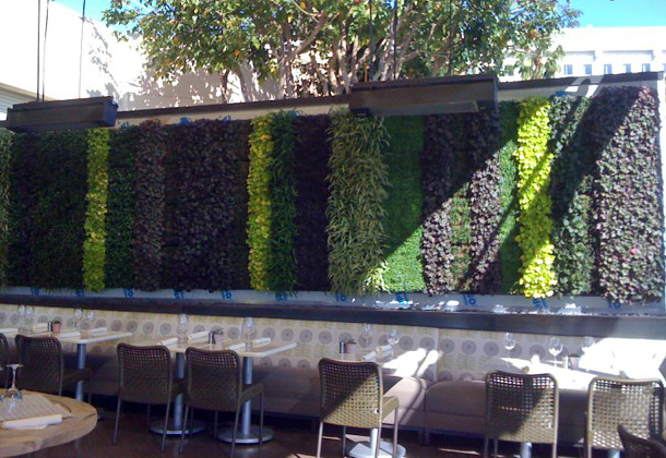 Green architecture on pinterest green walls vertical for Cafe jardin newport beach