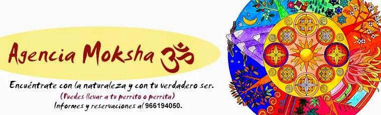 Agencia Moksha