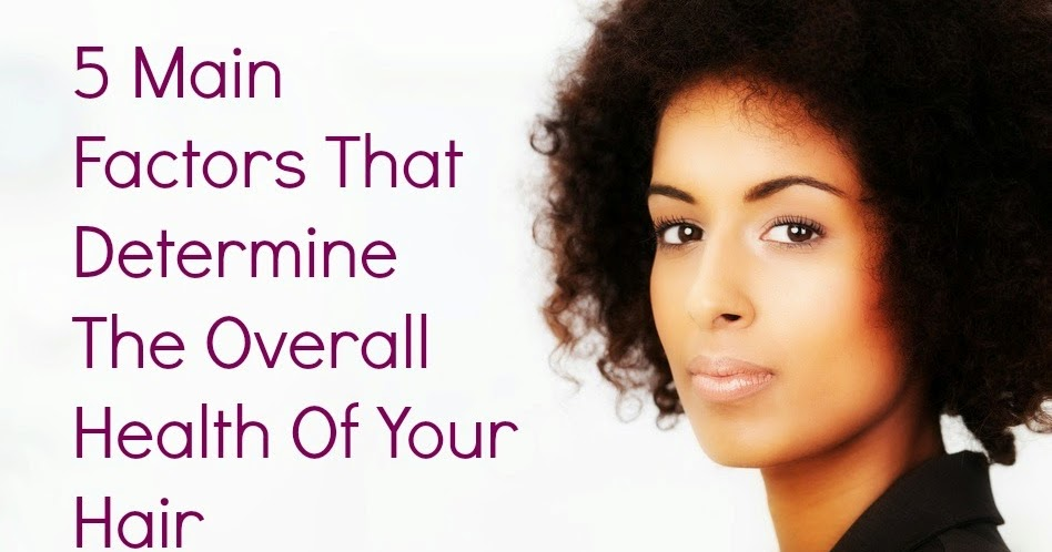 5 Main Factors That Determine The Overall Health Of Your ...