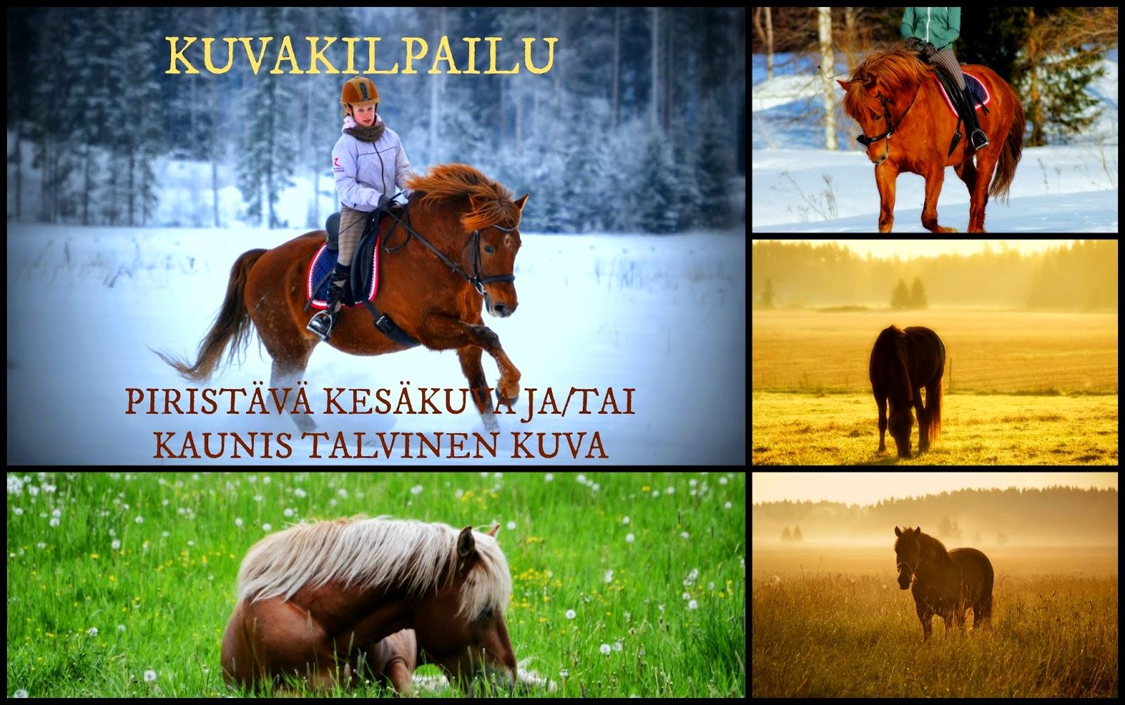 http://paivakummunpihatto.blogspot.fi/2014/12/11-luukku-loikahtelee-kameran-kanssa.html
