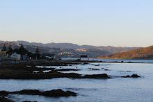 Views of Wellington
