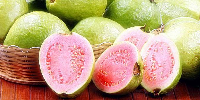 Guava Fruit Benefits For Female Beauty Canada