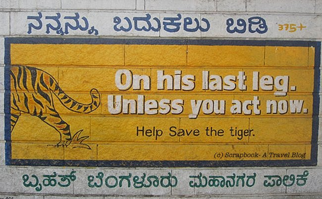 Initiatives Save Tiger In India Scrapbook A Travel Blog