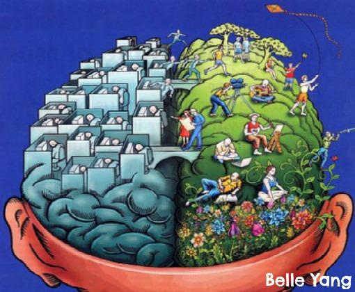 lado esquerdo lado direito cérebro
