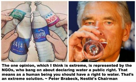 Nestlé Chairman Peter Brabeck thinks water isn't a public right.