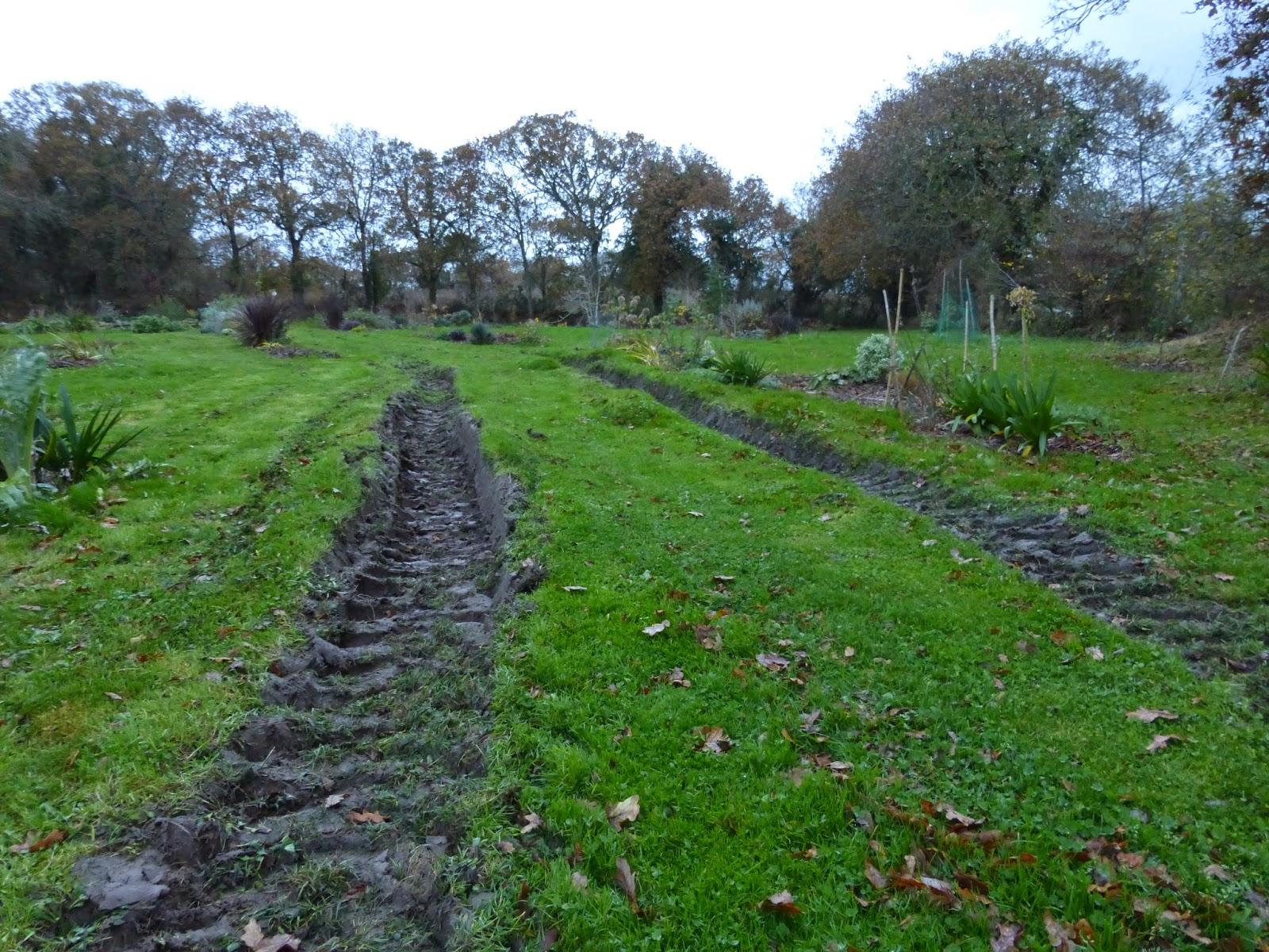 Mon jardin entre terre et mer des d g ts au jardin - Comment supprimer le liseron au jardin ...