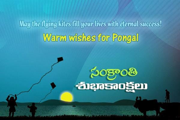 tamil pongal 2015 wishes greetings messages ponguga pongal sengarumbu ...