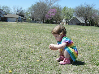 Picking Dandelions @ the Park