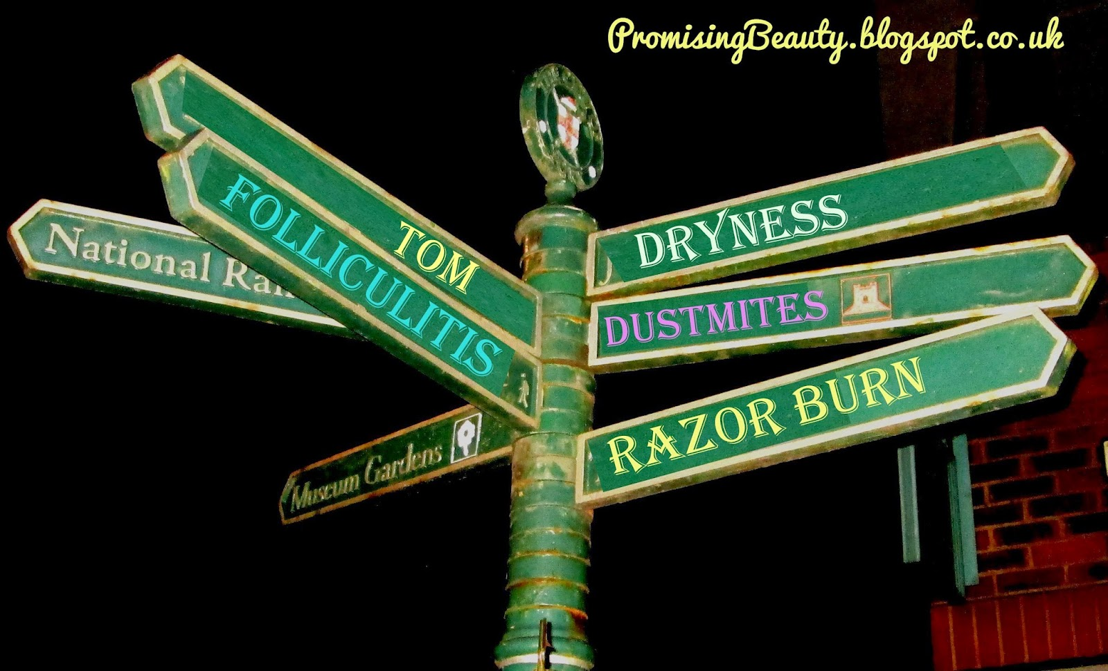 Green signpost with signs for causes of shaving irritation, time of the month, dryness, dustmites, razor burn, folliculitis.