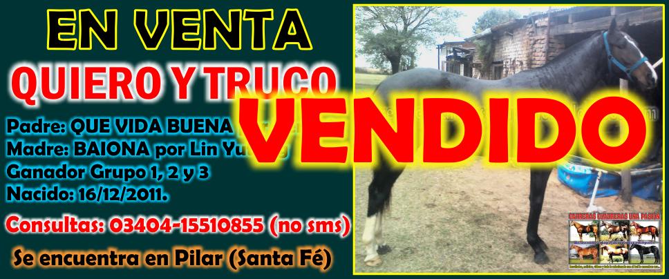 QUIERO Y TRUCO - 11.07.2014 VENDIDO