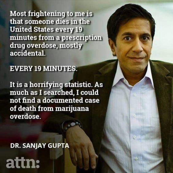 Dr. Sanja Gupta