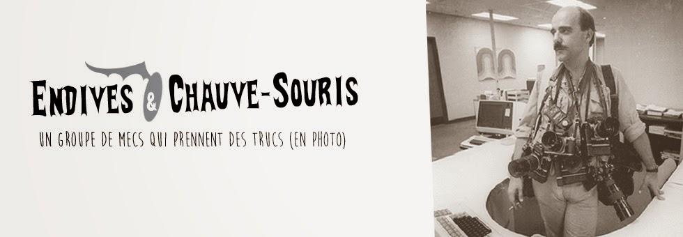 Endives & Chauve-souris