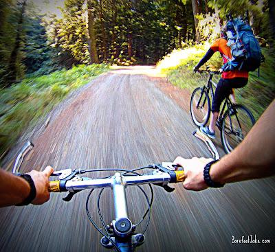 elwha bike