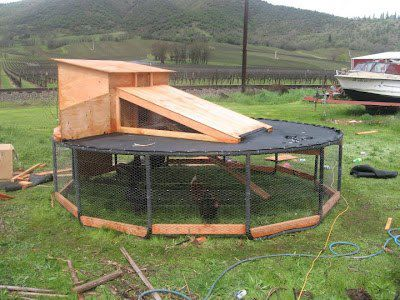 Trampoline Bed For Sleeping
