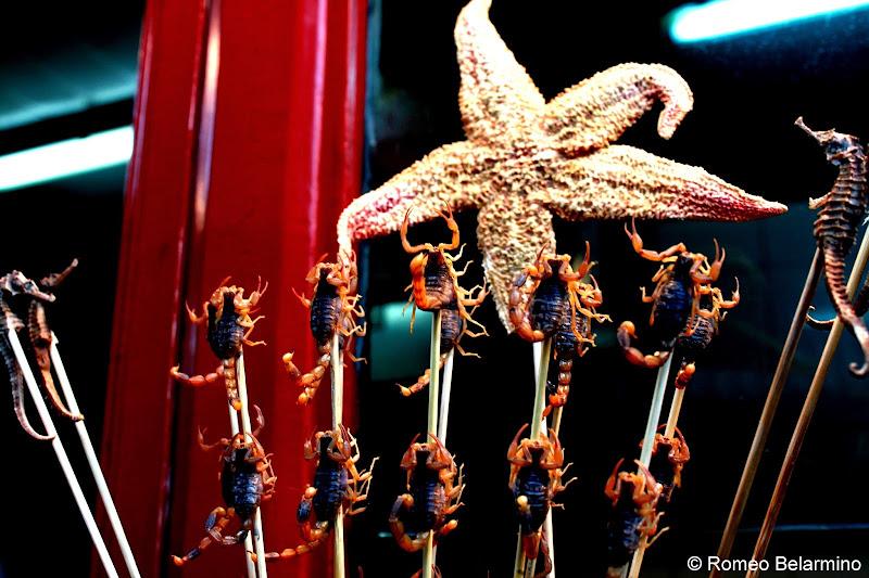 Starfish, Seahorse, and Scorpion Skewers Wangfujing Snack Street Beijing China