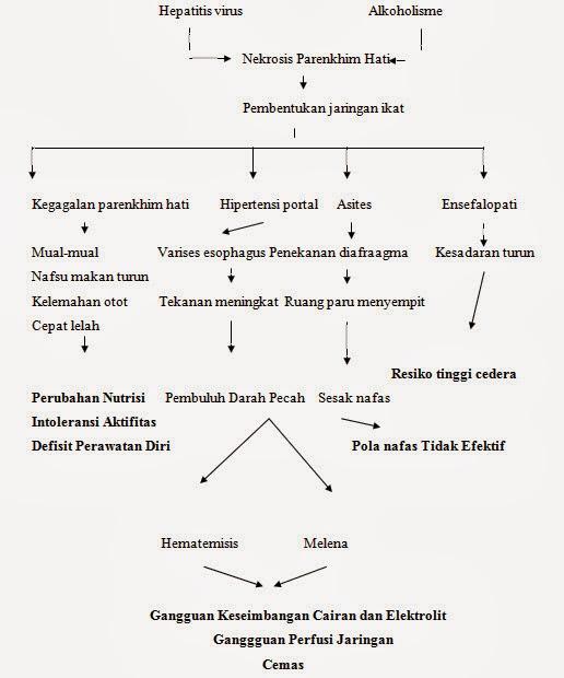 Pathway Sirosis Hepatis (Sirosis Hati)