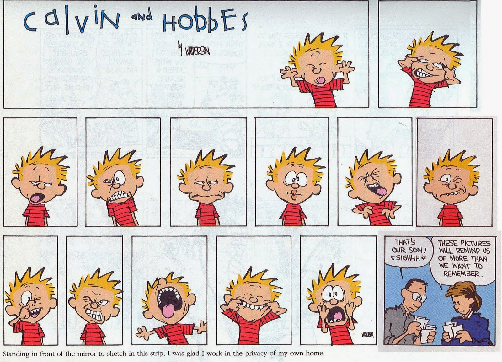 calvin and hobbes facial expressions