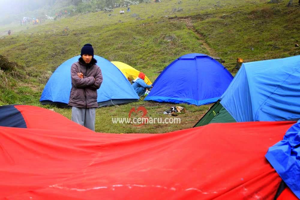 Sehat dengan Camping
