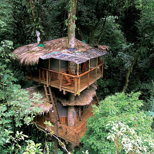 Pictovista 22 Most Incredible Tree Houses Ever Built