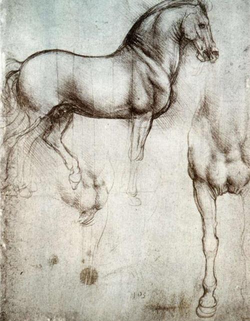 Estudio de los caballos por Leonardo Da Vinci