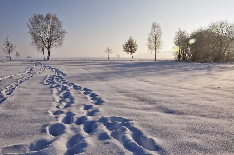Planlos und zugleich voller Tatendrang | Schreibzeit im Januar