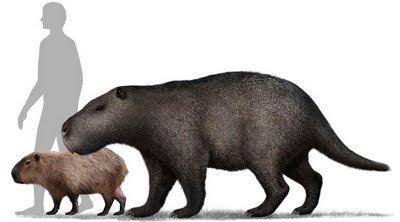 prehistoria en Uruguay Josephoartigasia