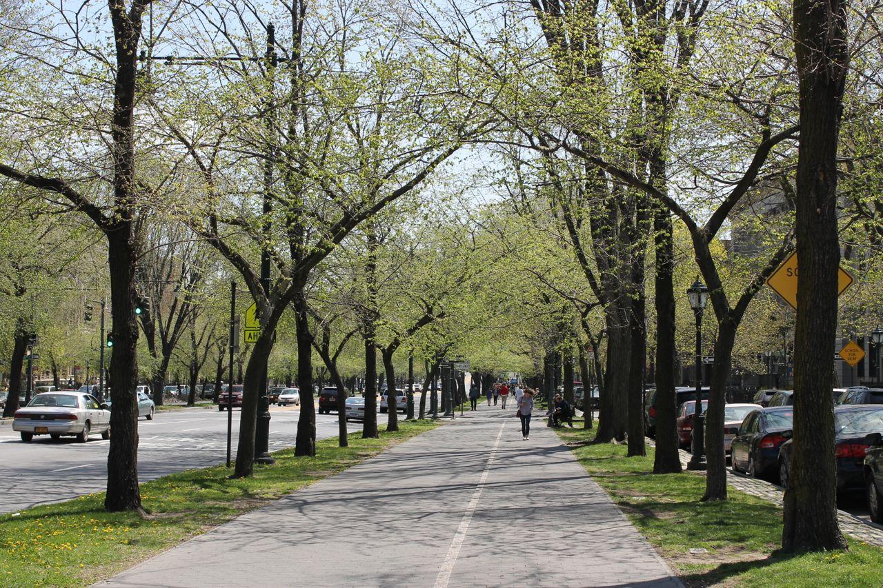 Eastern Parkway, Brooklyn Street, Brooklyn, Sidewalk