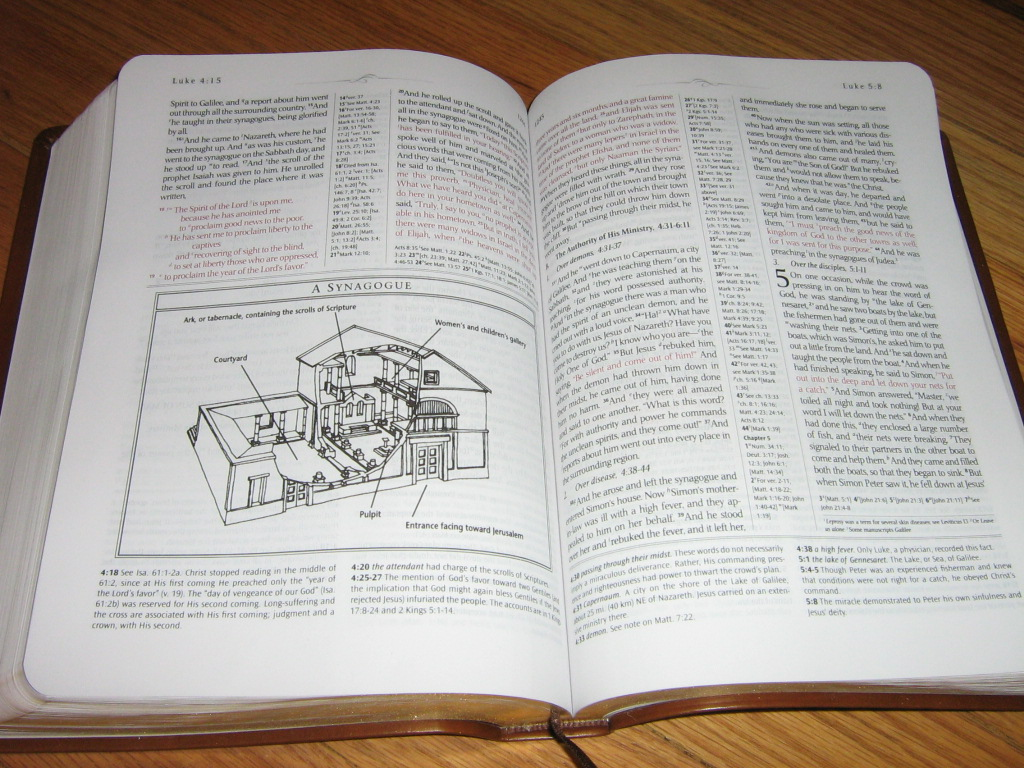 Hcgdietinsight1 Esv Keyword Study Bible Leather you