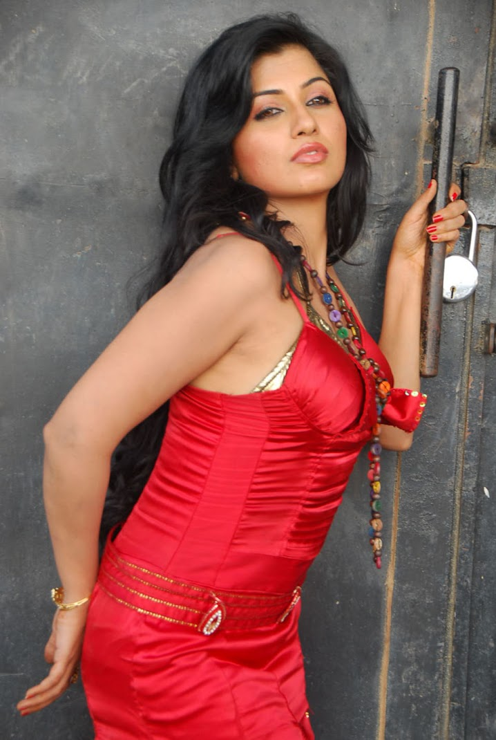 Aarthi Puri Red Hot Spicy Photo Gallery