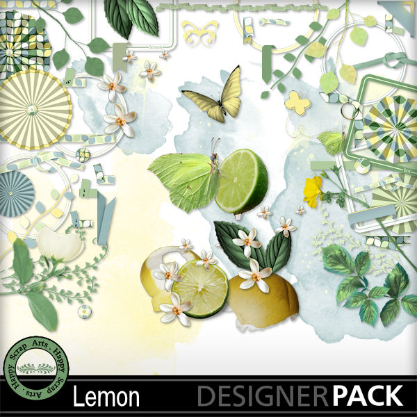 June 2016 HSA Lemon kit