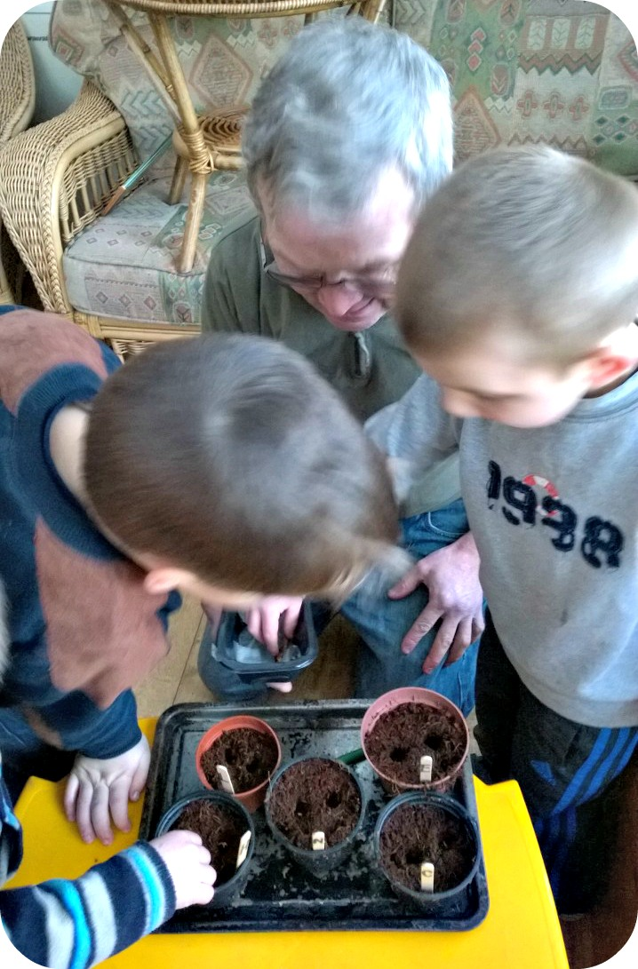 Gardening With Kids - Planting seeds with Grandad