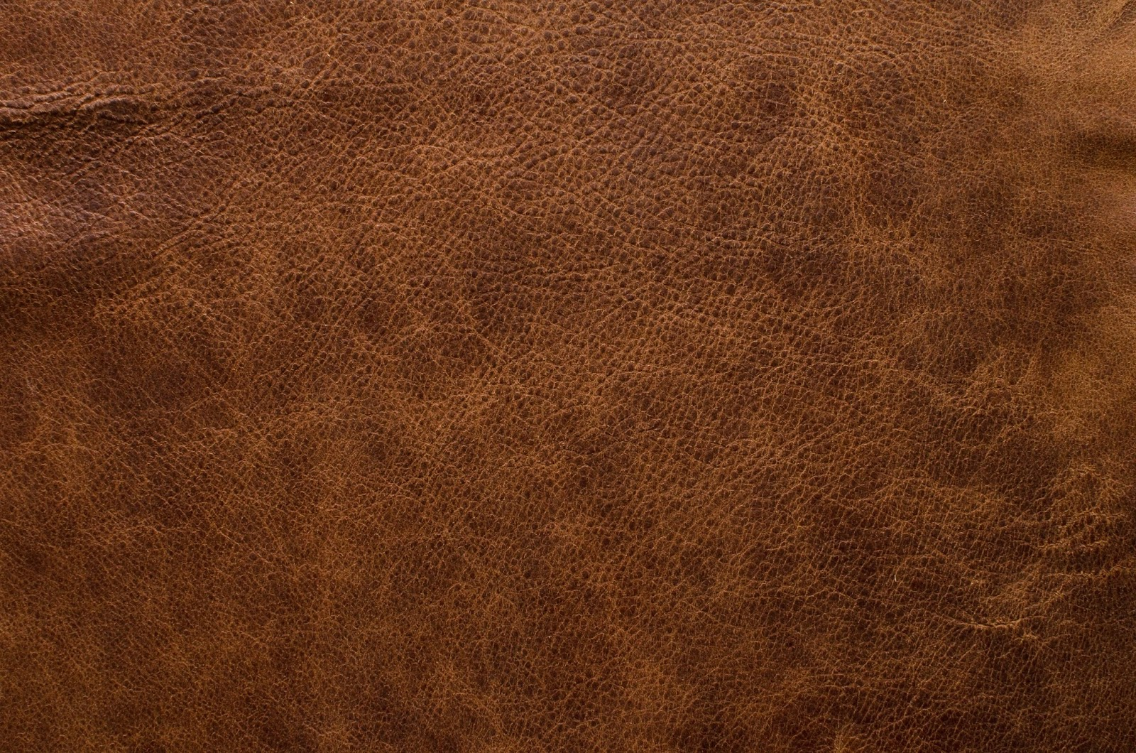Amazoncom Customer reviews Leather Restore Leather